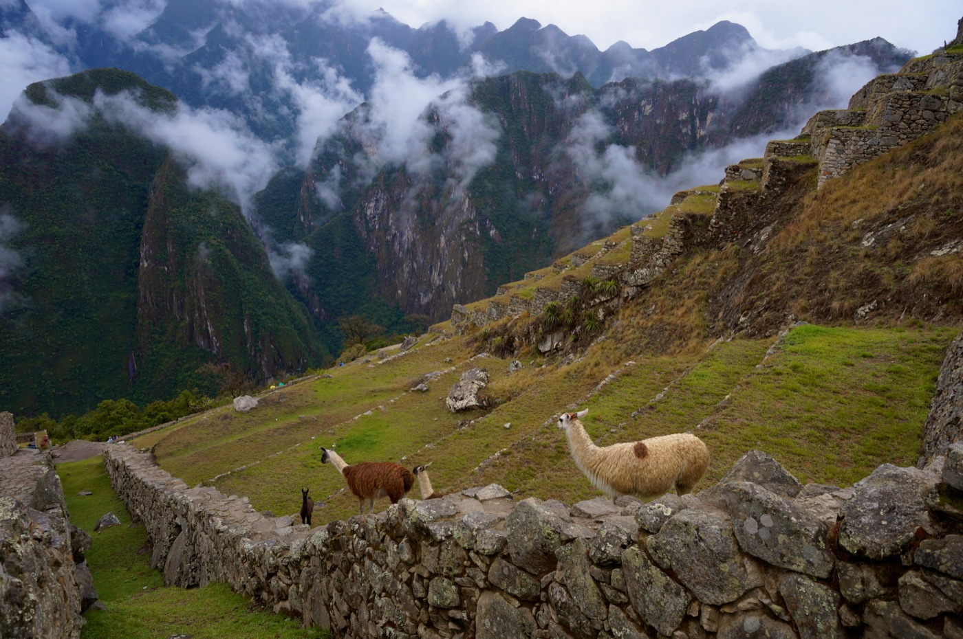 GirlsLove2Travel Machu Picchu12