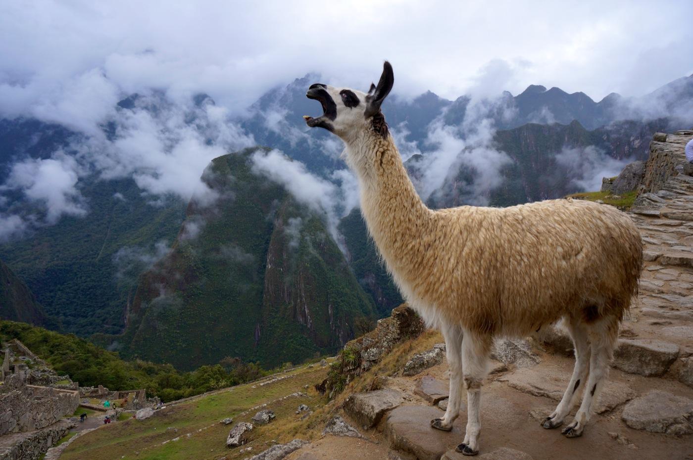 GirlsLove2Travel Machu Picchu2