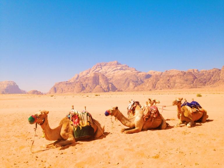 Wadi-Rum14
